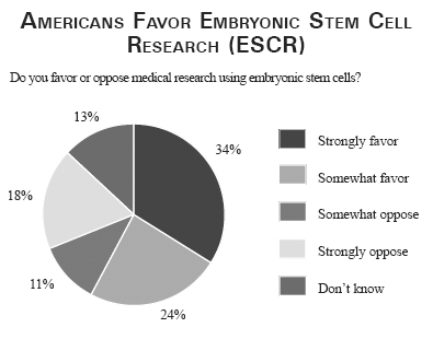 argumentative essay on stem cell research co argumentative essay on stem cell research